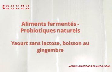 Aliments fermentés, probiotiques naturels